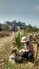 Briquetadora, jardín y niños en el Ashram...