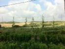 Jardines y su entorno