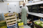 Seva: recoger donaciones de comida, almacenarlas y clasificarlas
