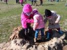 Nueva plantación de árboles por un colegio de Segovia, 23 de marzo de 2018