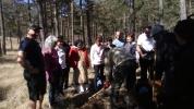 Plantación de árboles - Parc de Penyagolosa