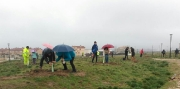 plantación en Segovia Abril18
