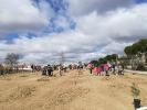 plantación Segovia 15/3/2019