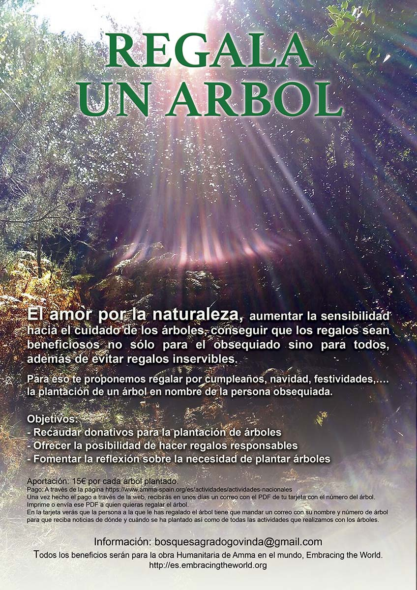 cartel regalo arbol